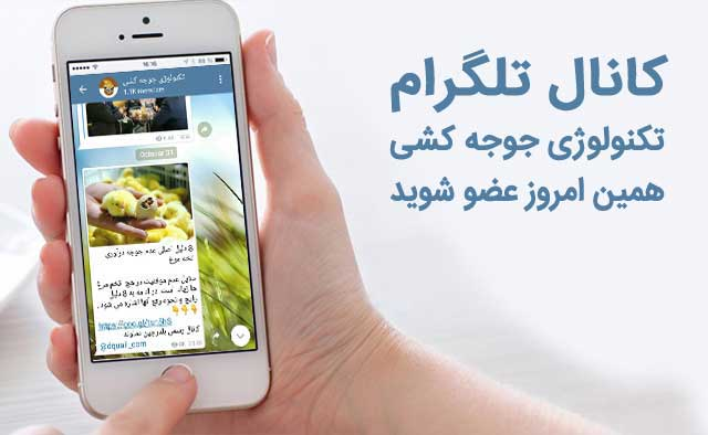 کانال-تلگرام-شرکت-دماوند