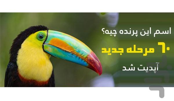 اسم این پرنده چیه