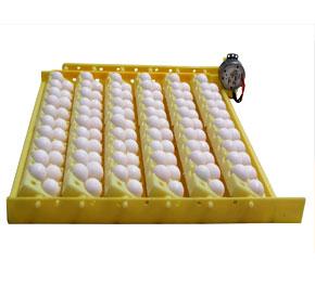 حرکت تخم در دستگاه جوجه کشی
