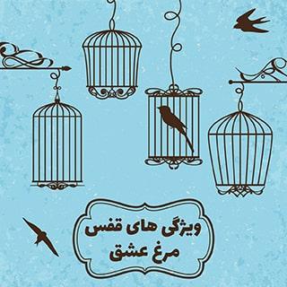 قفس مرغ عشق به عنوان محل زندگی پرنده باید چه ویژگی هایی داشته باشد