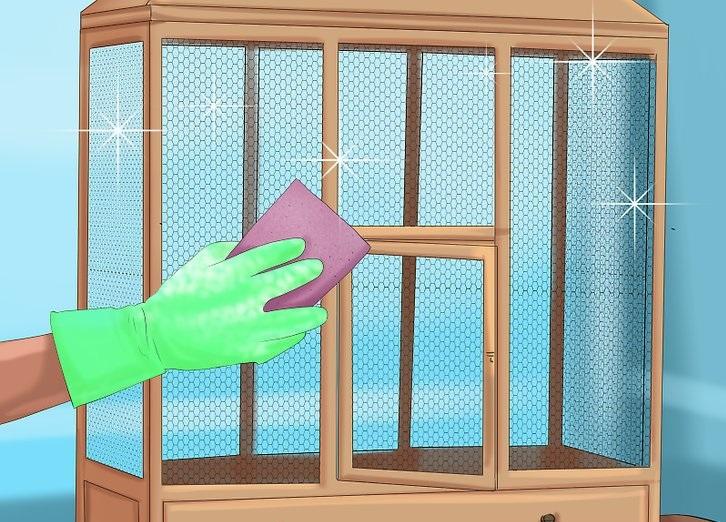 نظافت قفس قناری