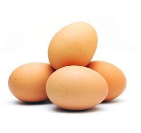 اهمیت کیفیت تخم در جوجه کشی با ماشین جوجه کشی