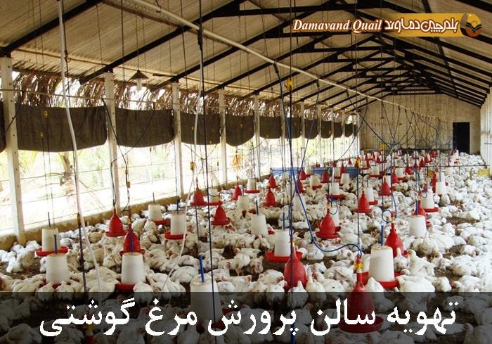 تهویه سالن نگهداری مرغ گوشتی
