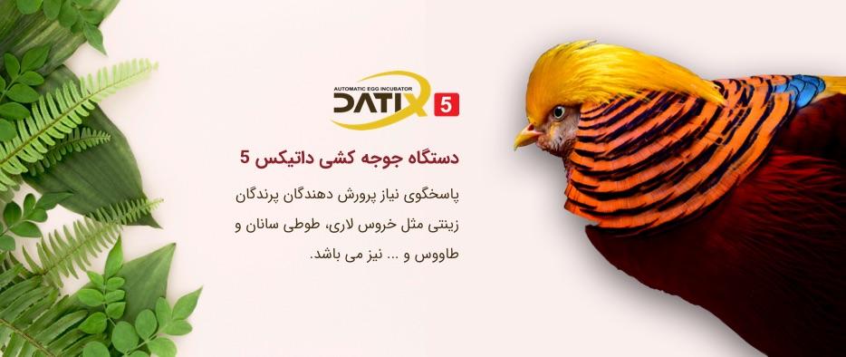 دستگاه جوجه کشی مخصوص پرندگان زینتی