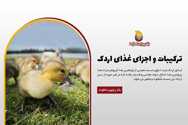 ترکیبات غذای اردک
